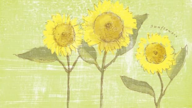 Sunflower Desktop Wallpaper on Today's Mama.com