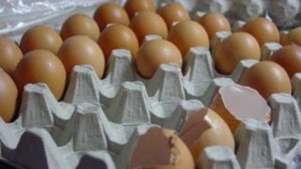 698394_eggs