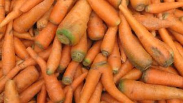 Photo credit: stock.xchng carrot