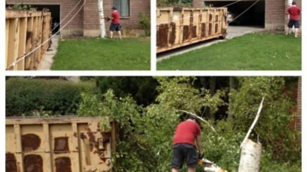 felling-trees-400x400