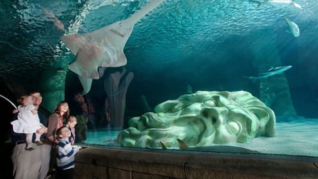 Five Cool Things to Do with Kids in the Twin Cities