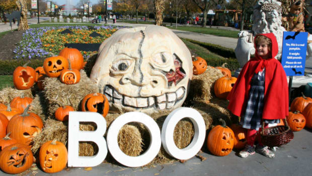 Boo-Zoos-Go-Wild-for-Halloween-df23e03199b942b2ad9dafe8a92f2dba