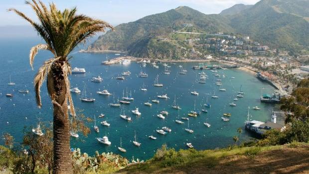 Insider-Guide-Catalina-Island-7f1ce691565b4d42b3e78198d29bea9a