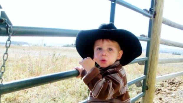 Our Wyatt