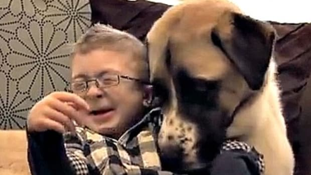 A Boy His Dog, This Video Is A Family Must-See www.TodaysMama.com