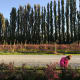 You don't have to roam far before you run into a farm or an orchard in Skagit Valley, Washington.More information to plan your stopHERE.Debbie, Today's Mama Editor