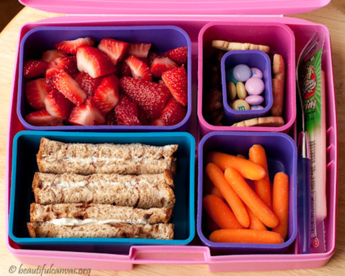 Laptop_Lunch_Bento_Box