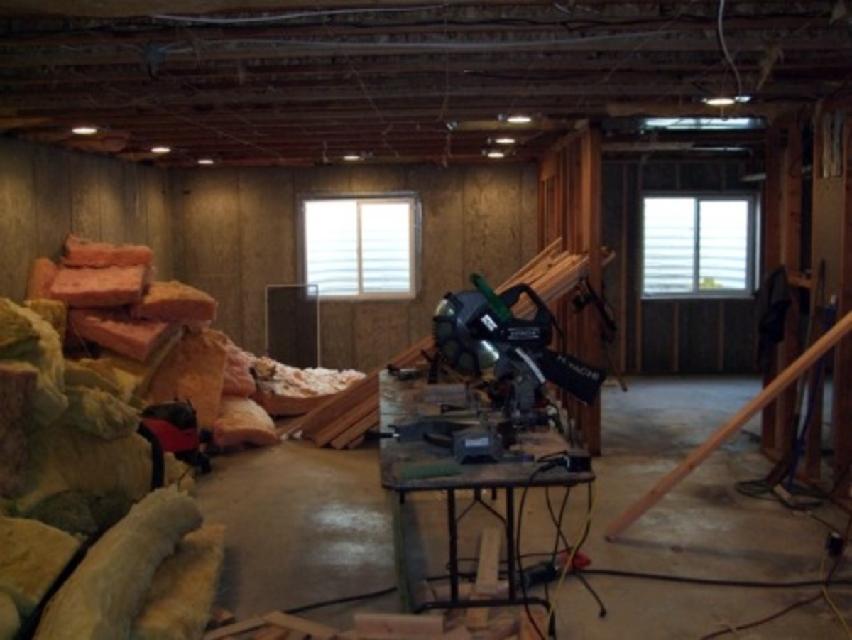 Basement Before (Late December)