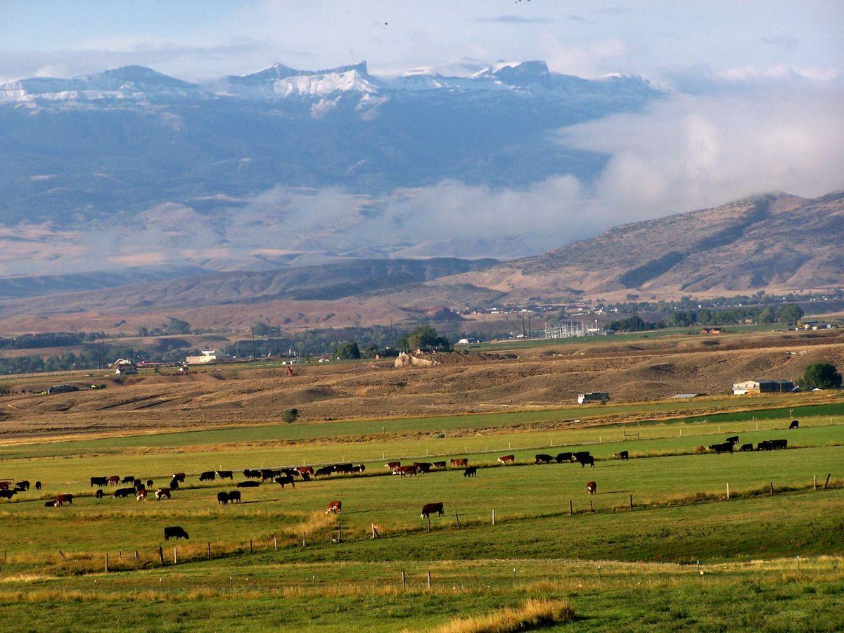 wyoming-pastureland