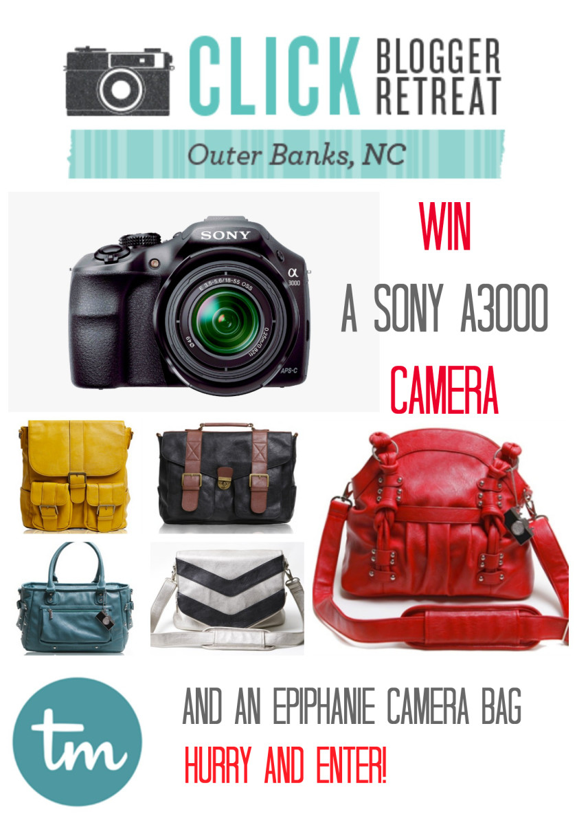 Win a New Sony Camera and an Epiphanie Camera Bag from TodaysMama