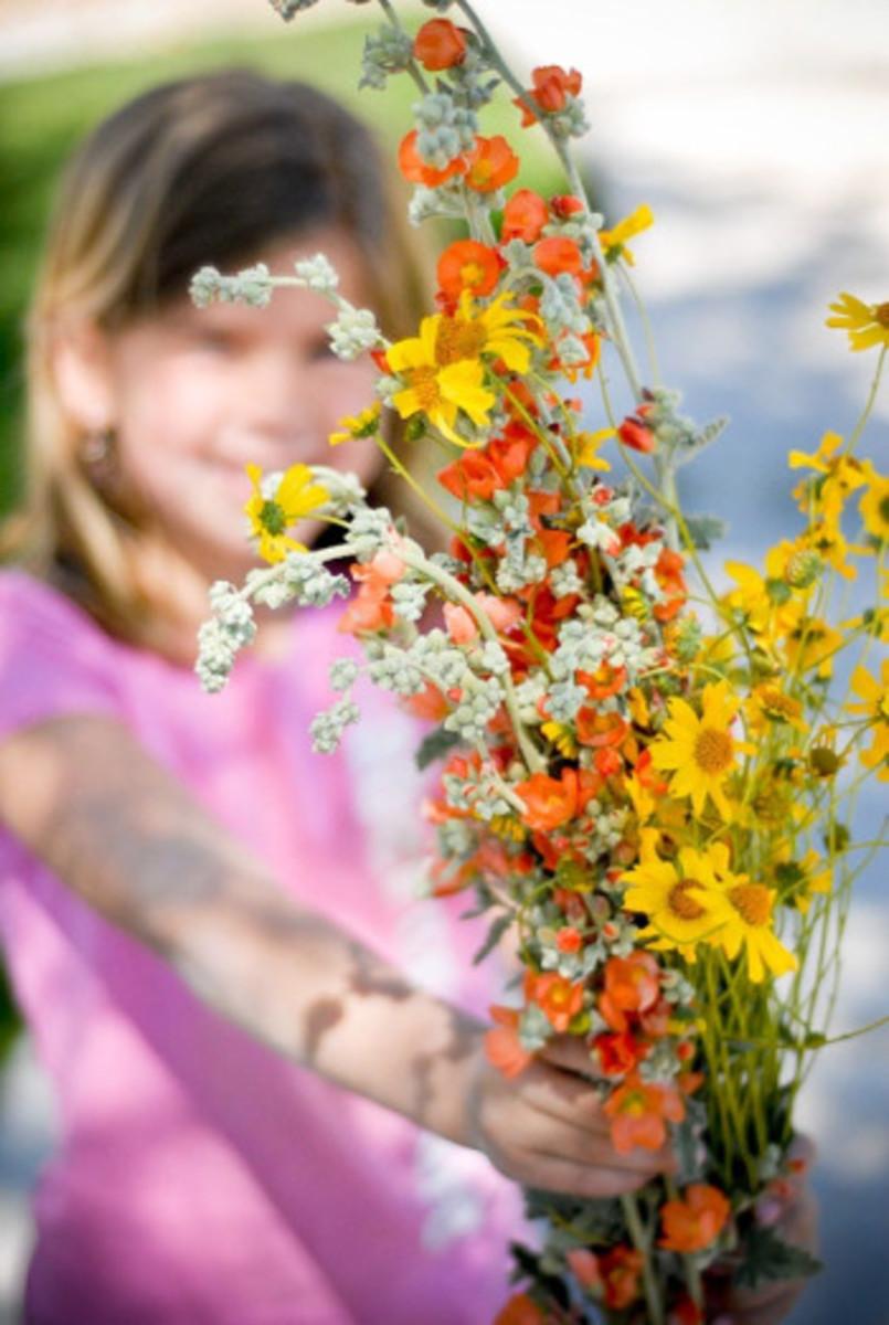 SP_Nov09 Flowers