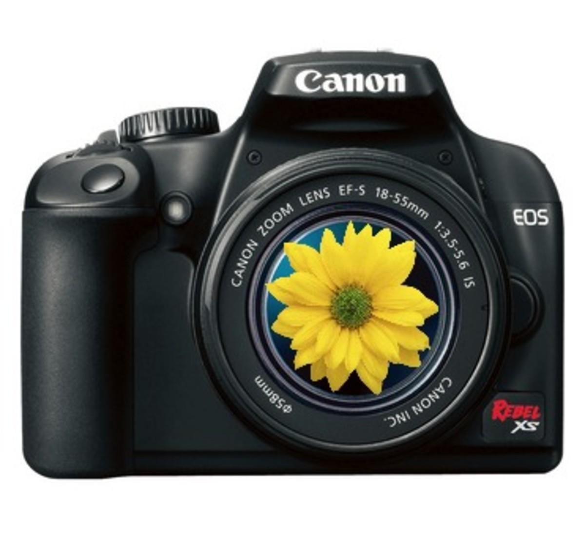Spring Camera