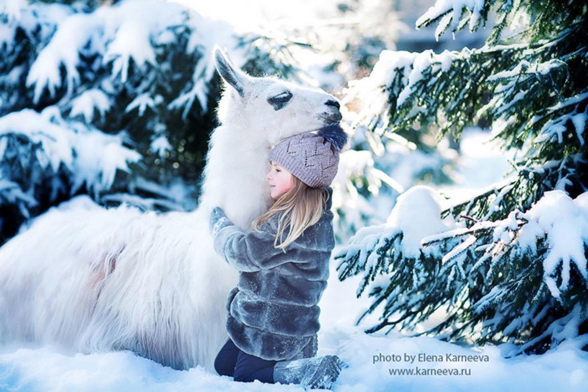 Winter portrait of girl and llama