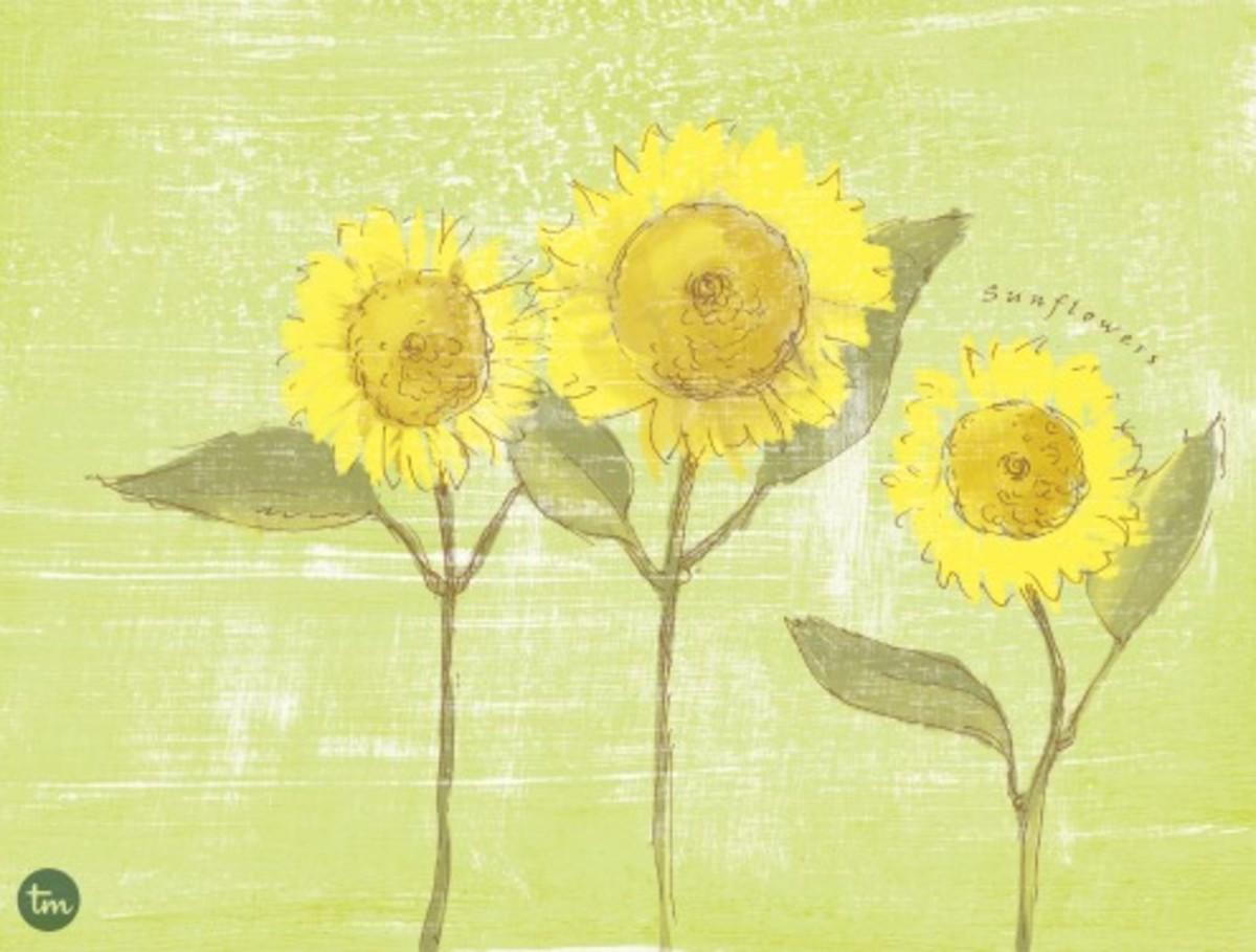 Sunflower Desktop Wallpaper on Today's Mama.com