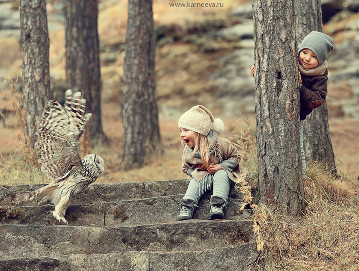 Children laughing with an owl in the woods