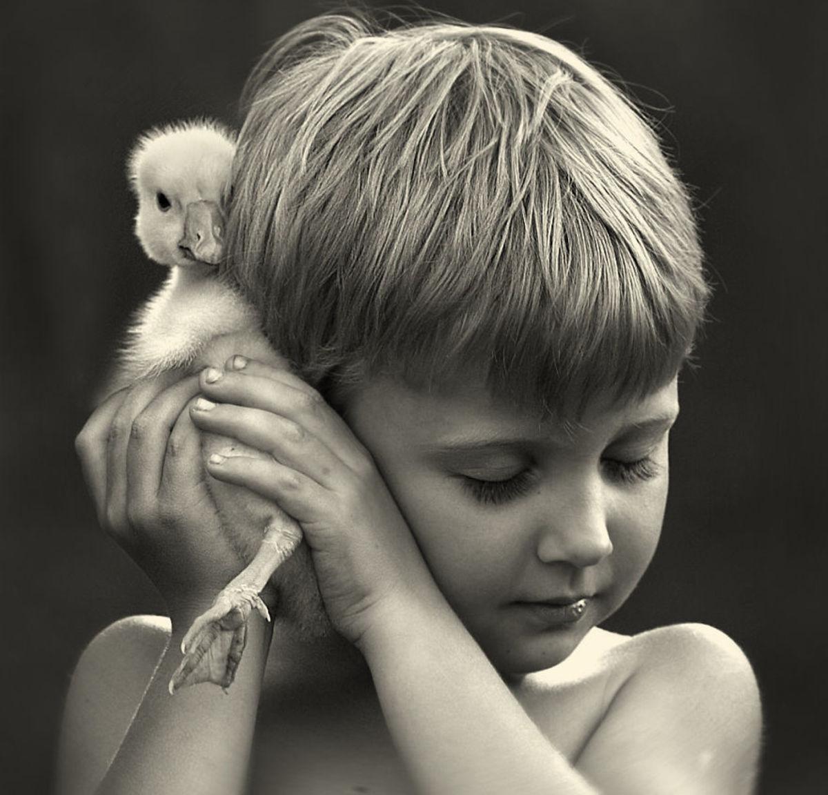 Portraits of children with baby animals