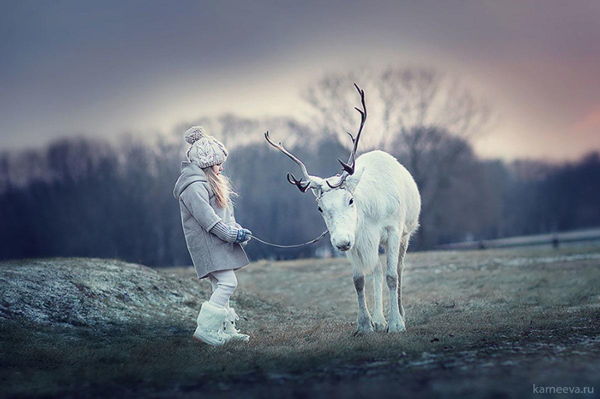 Dusk in the wintertime