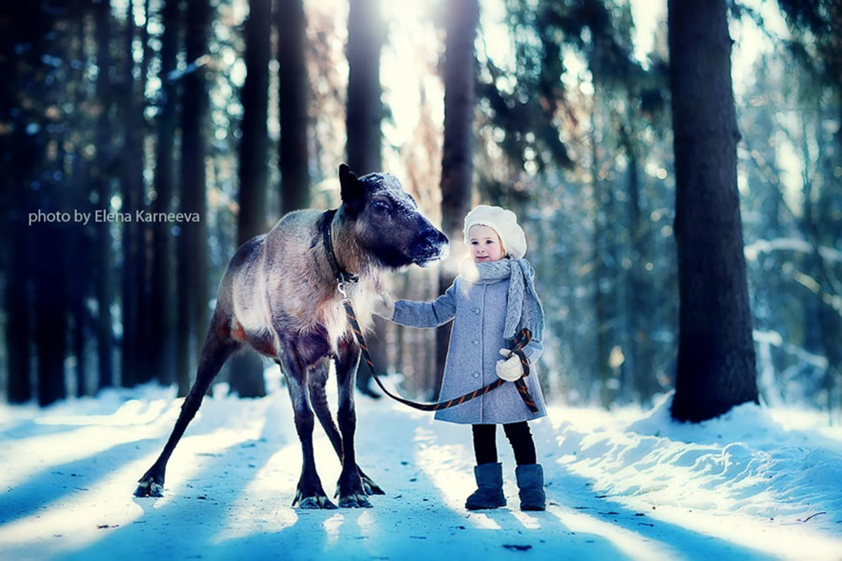 Amazing photography and light with kids and animals