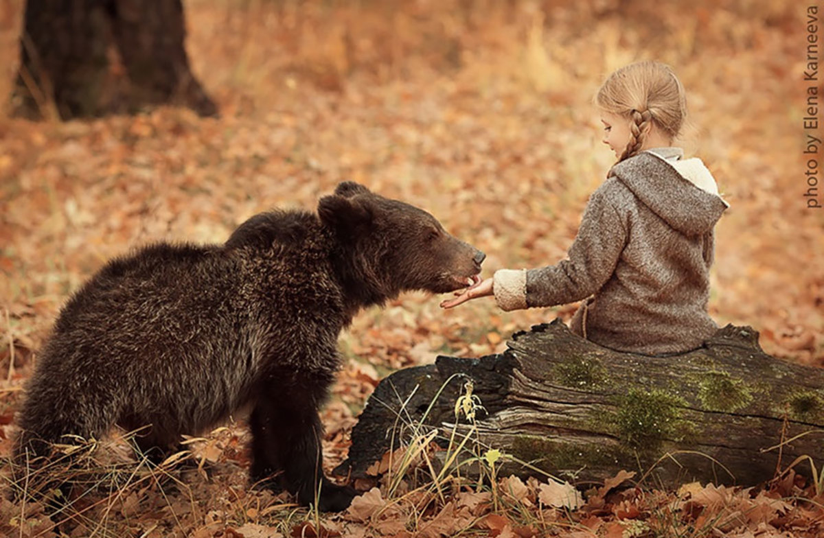 Amazing photograph of child and bear