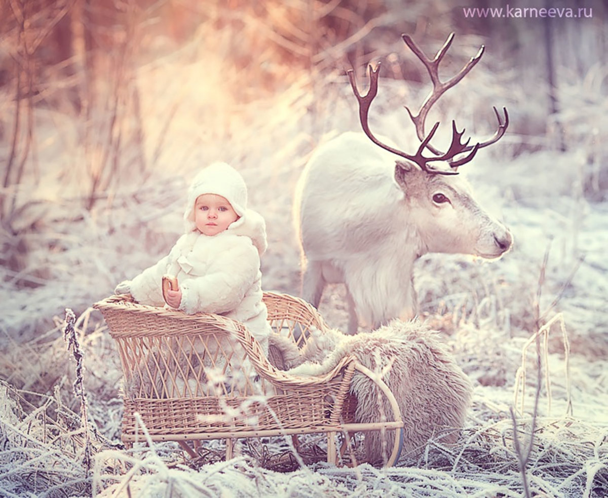Beautiful photograph of baby and reindeer