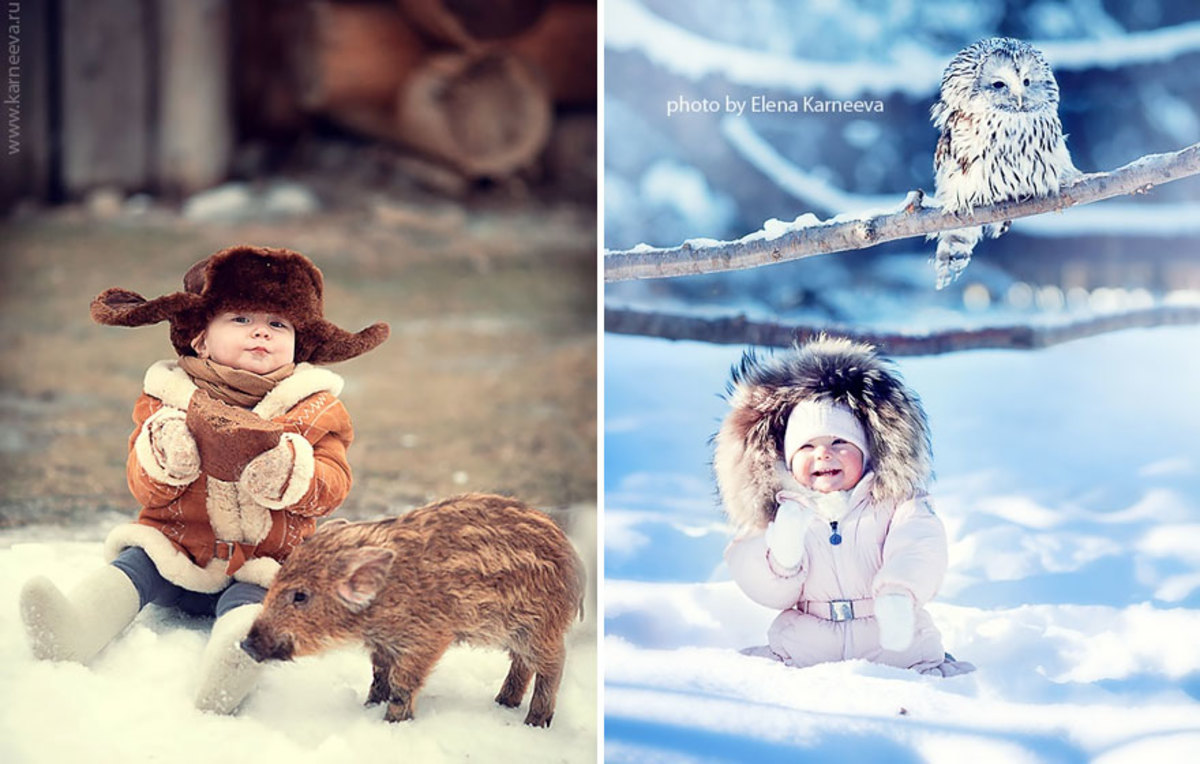 Babies photographed with wild boar and owl