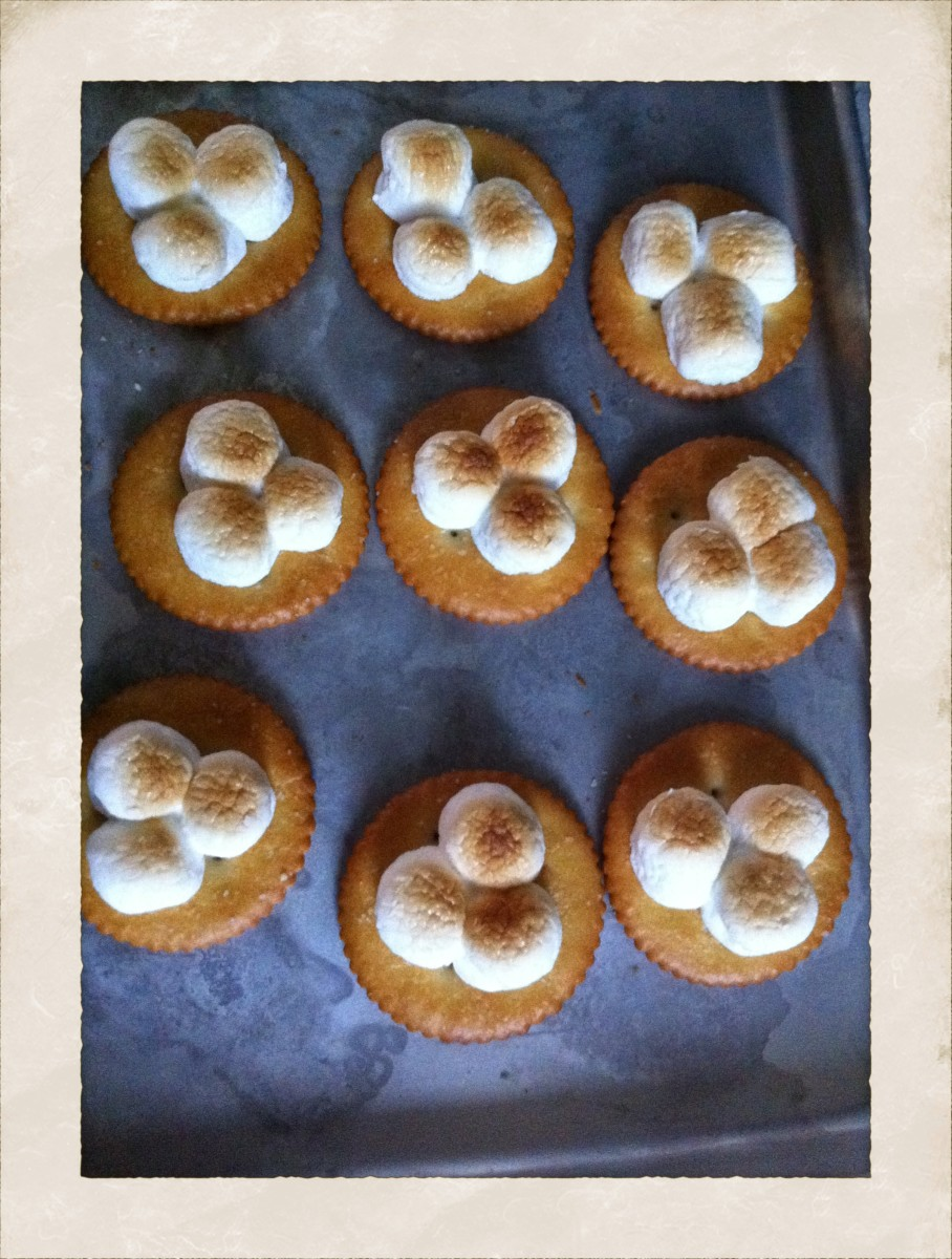 Amy's Original Version - Don't they look like little shamrocks?