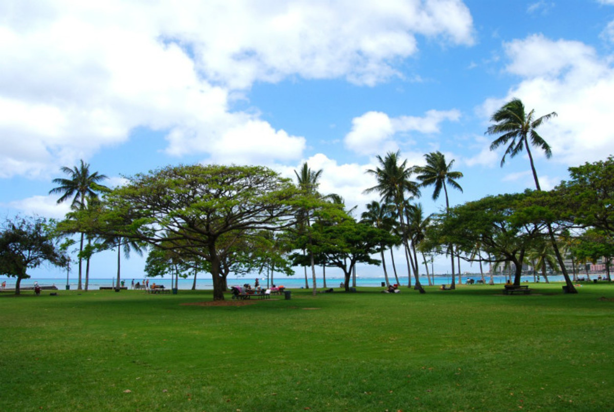 10-Free-Things-to-do-with-Kids-on-Oahu-394a3017e6894eec9c68f0693a51767a