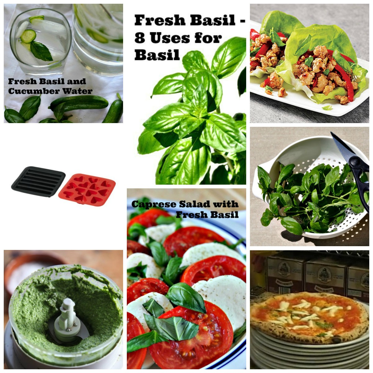 Fresh Basil - 8 Uses