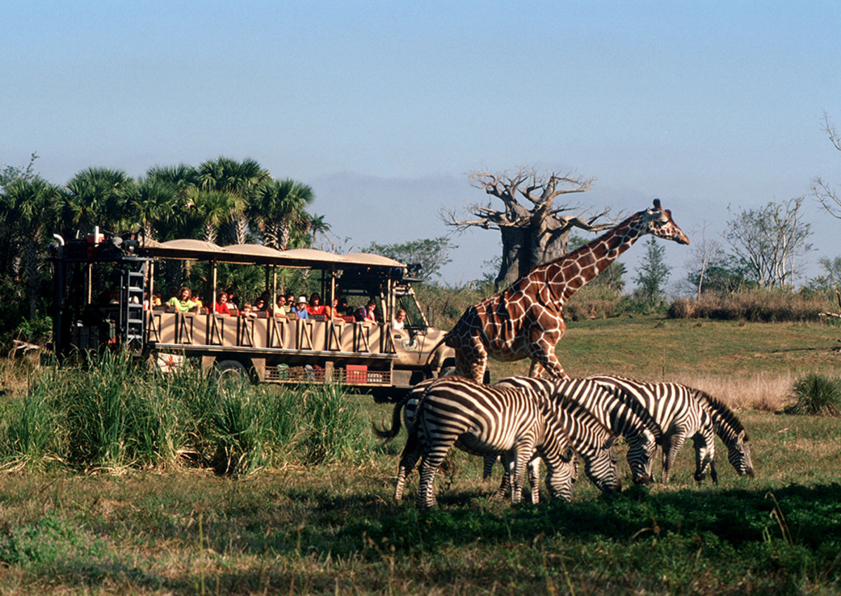 Kilimanjaro Safaris (Courtesy Disney World)
