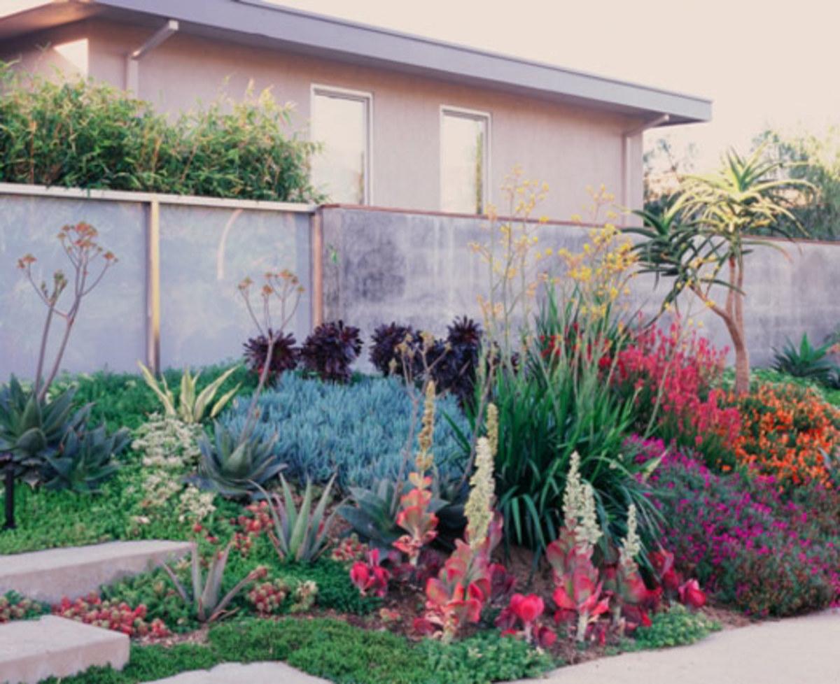 modern garden landscape