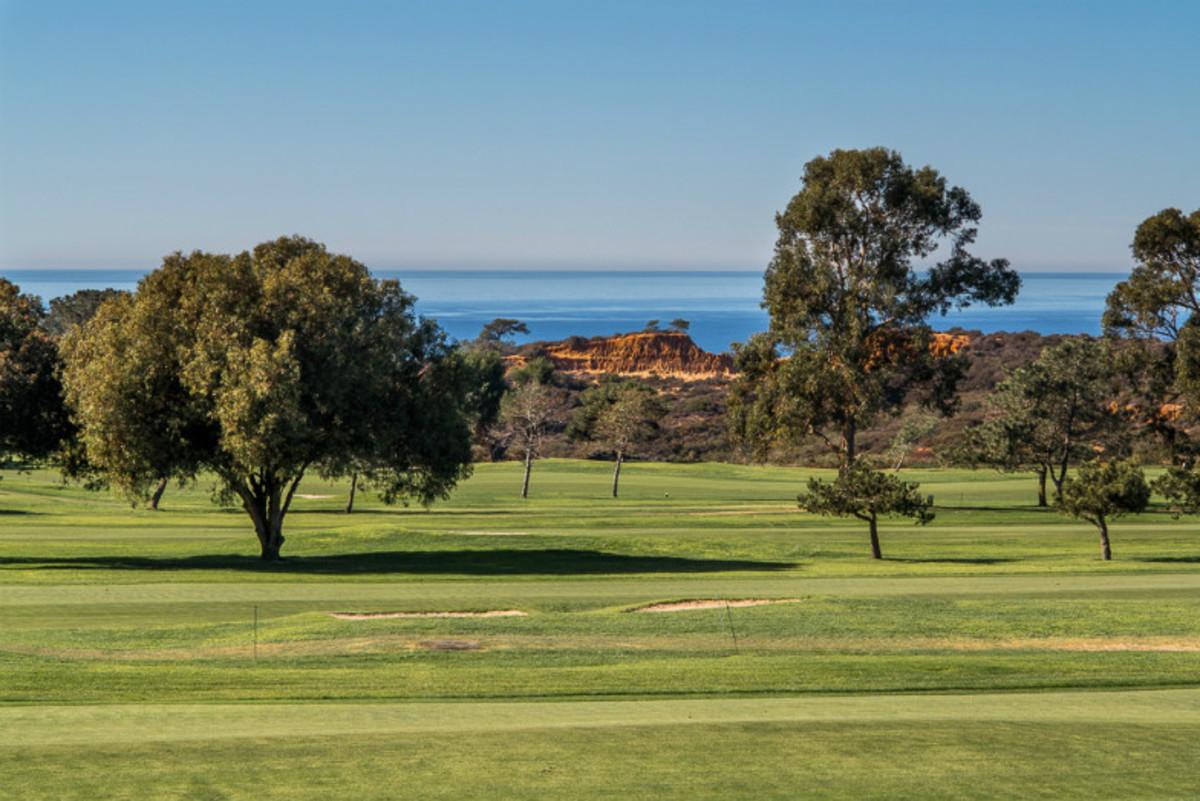Torrey Pines Golf Course (Flickr: Tim Buss)