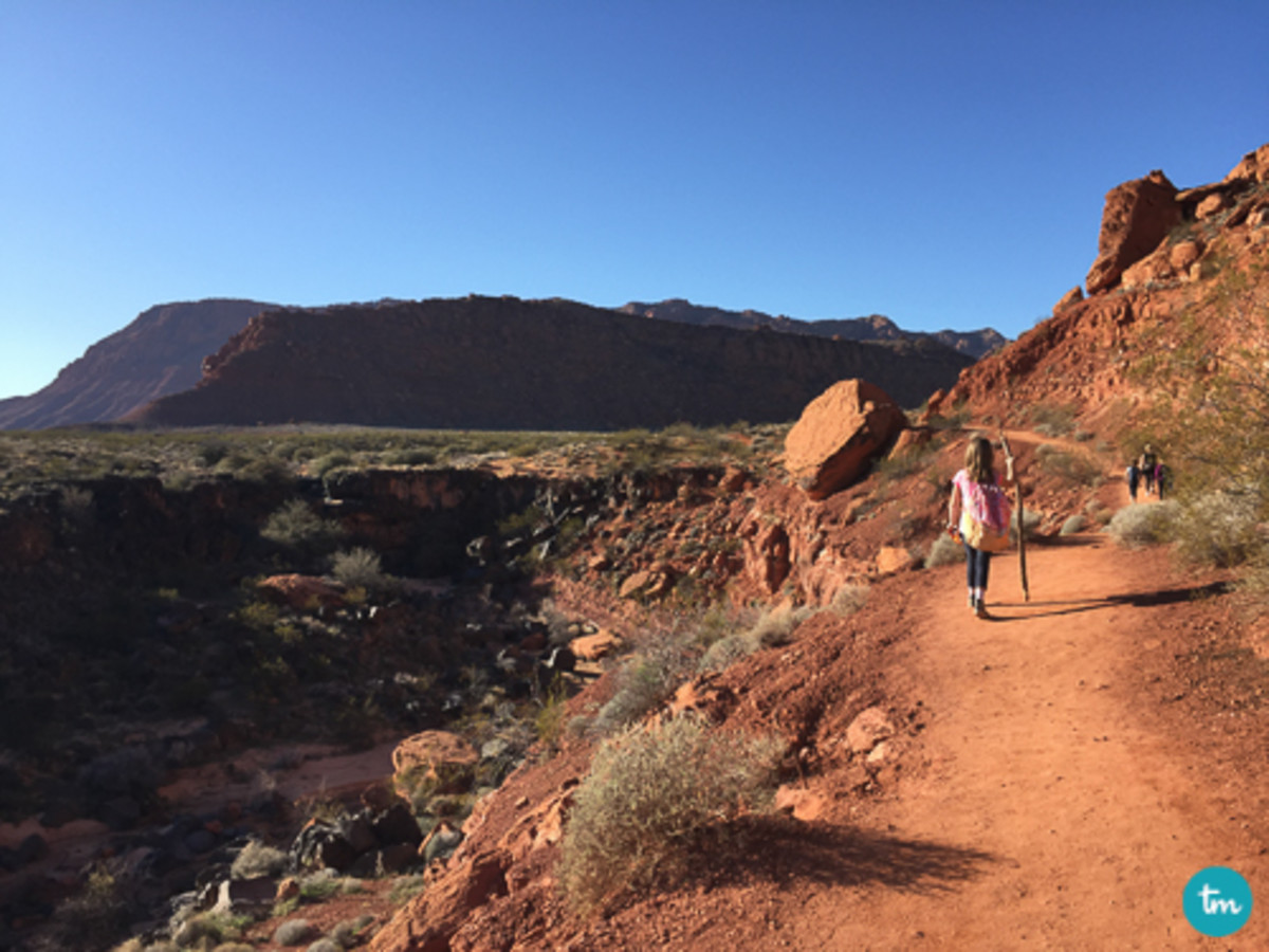 snow-canyon-state-park-with-kids-7-3