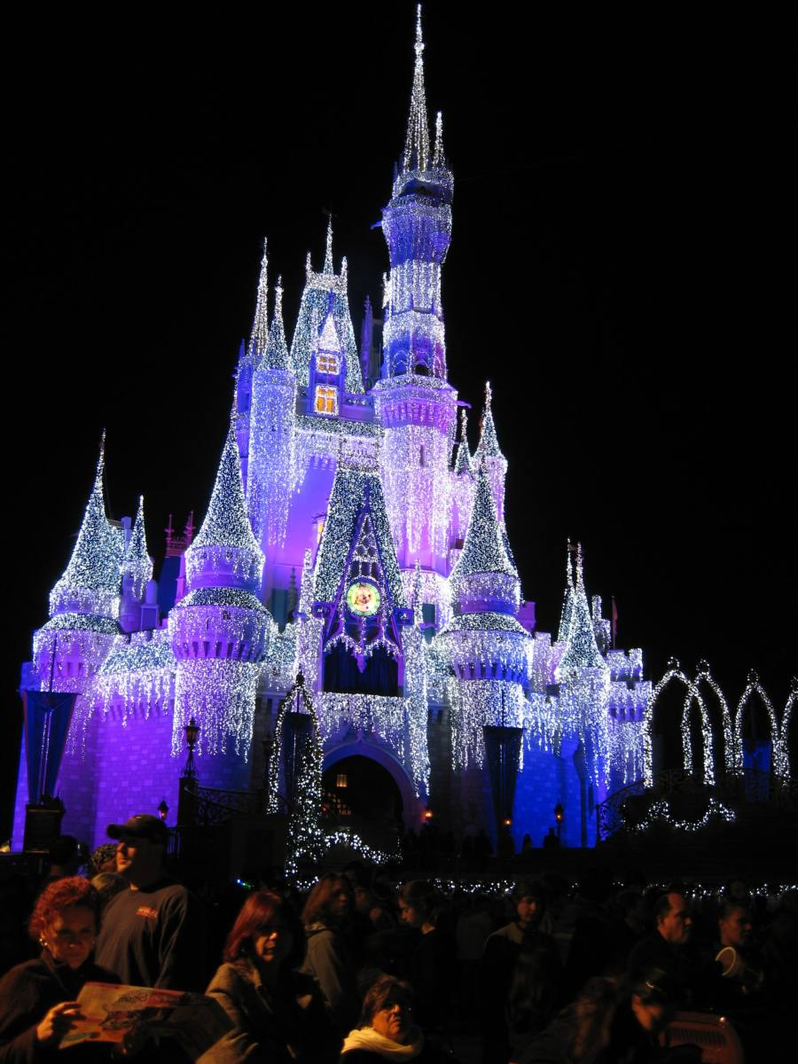 castle-dream-lights-picture-003