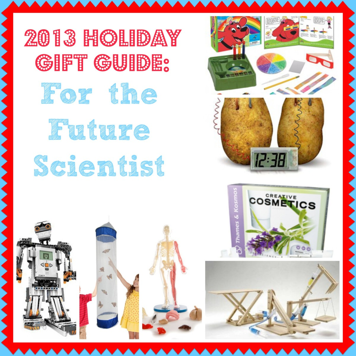 Gift Guide Future Scientist b