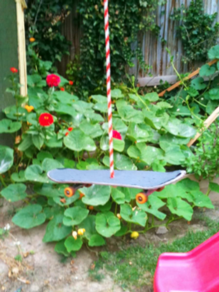 Skateboard Rope Swing