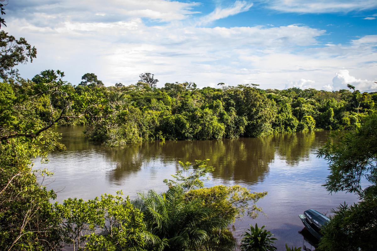 Peruvian Amazon (Flickr: Paul Hessell)