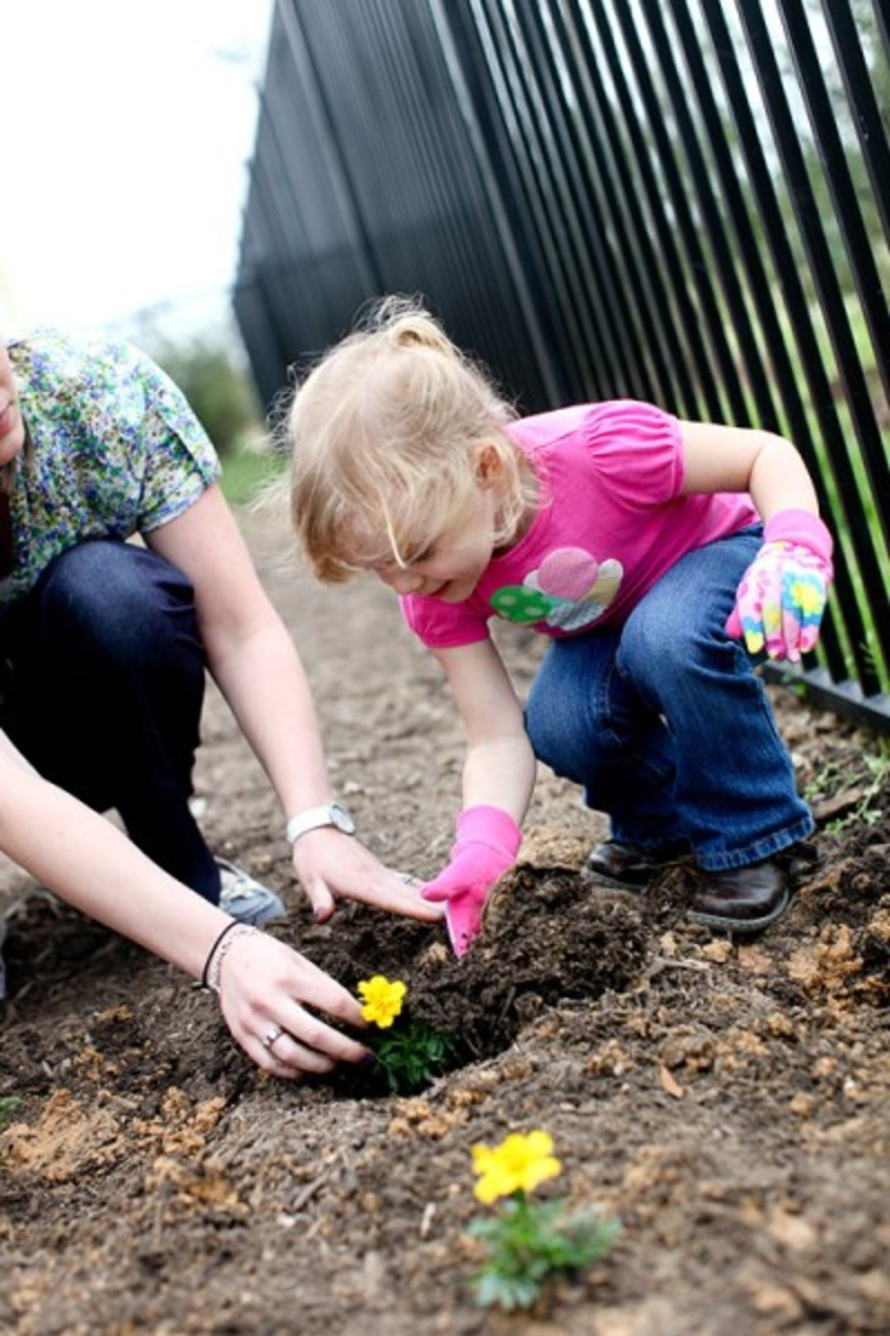 Gardening_052-400x600