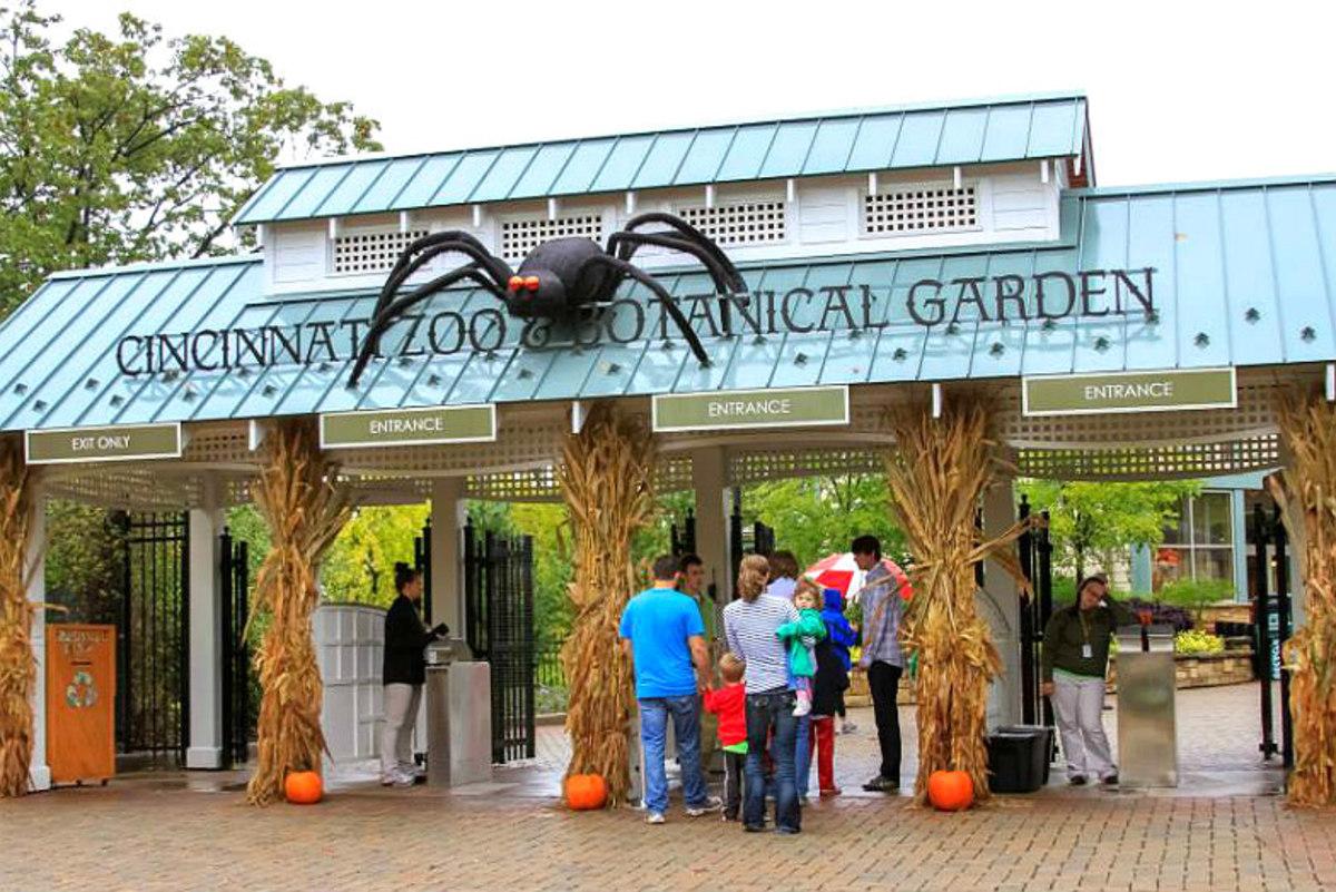 Boo-Zoos-Go-Wild-for-Halloween-8a96e1d545c84d1a8f476347ddb2764e