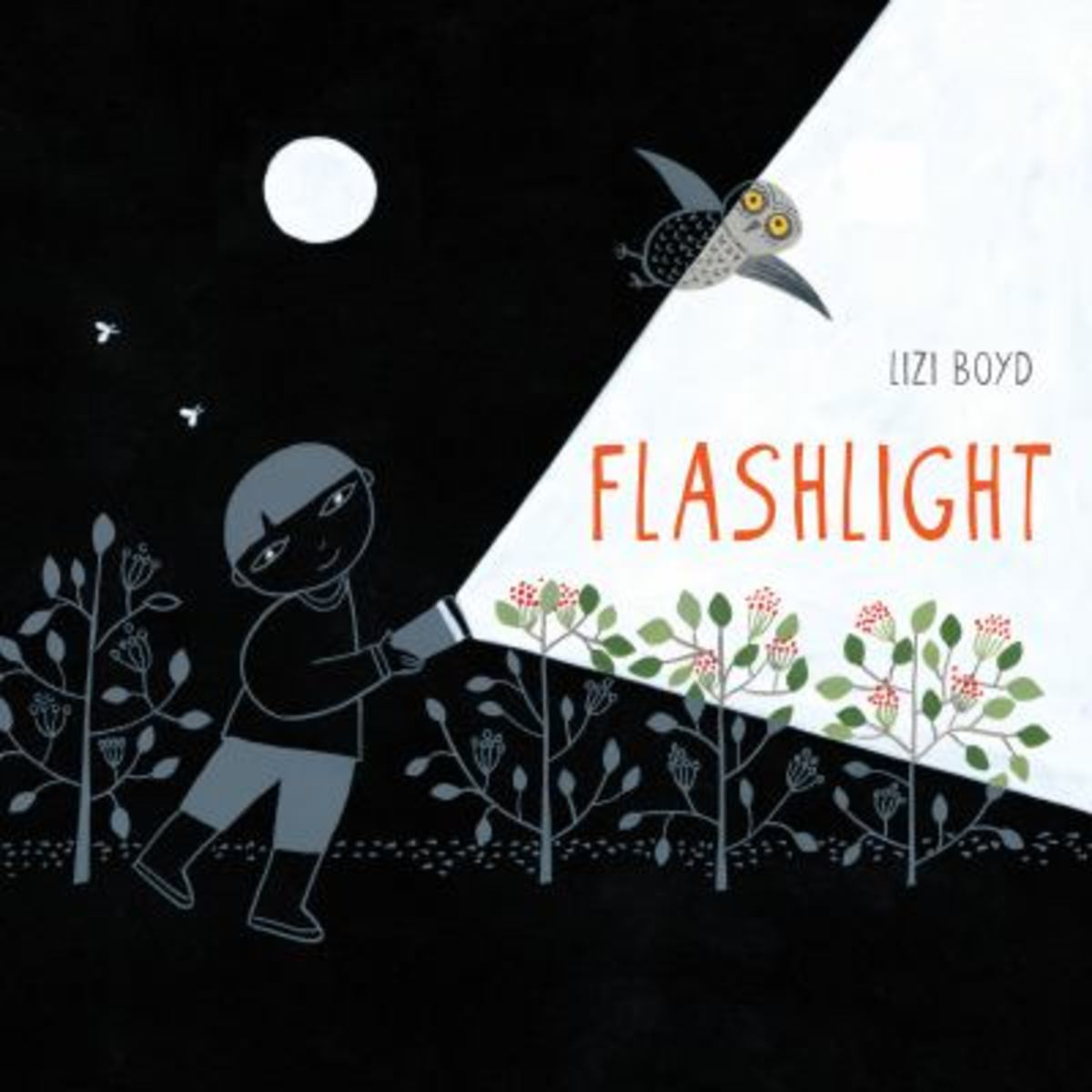 Best Wordless Picture Books Flashlight