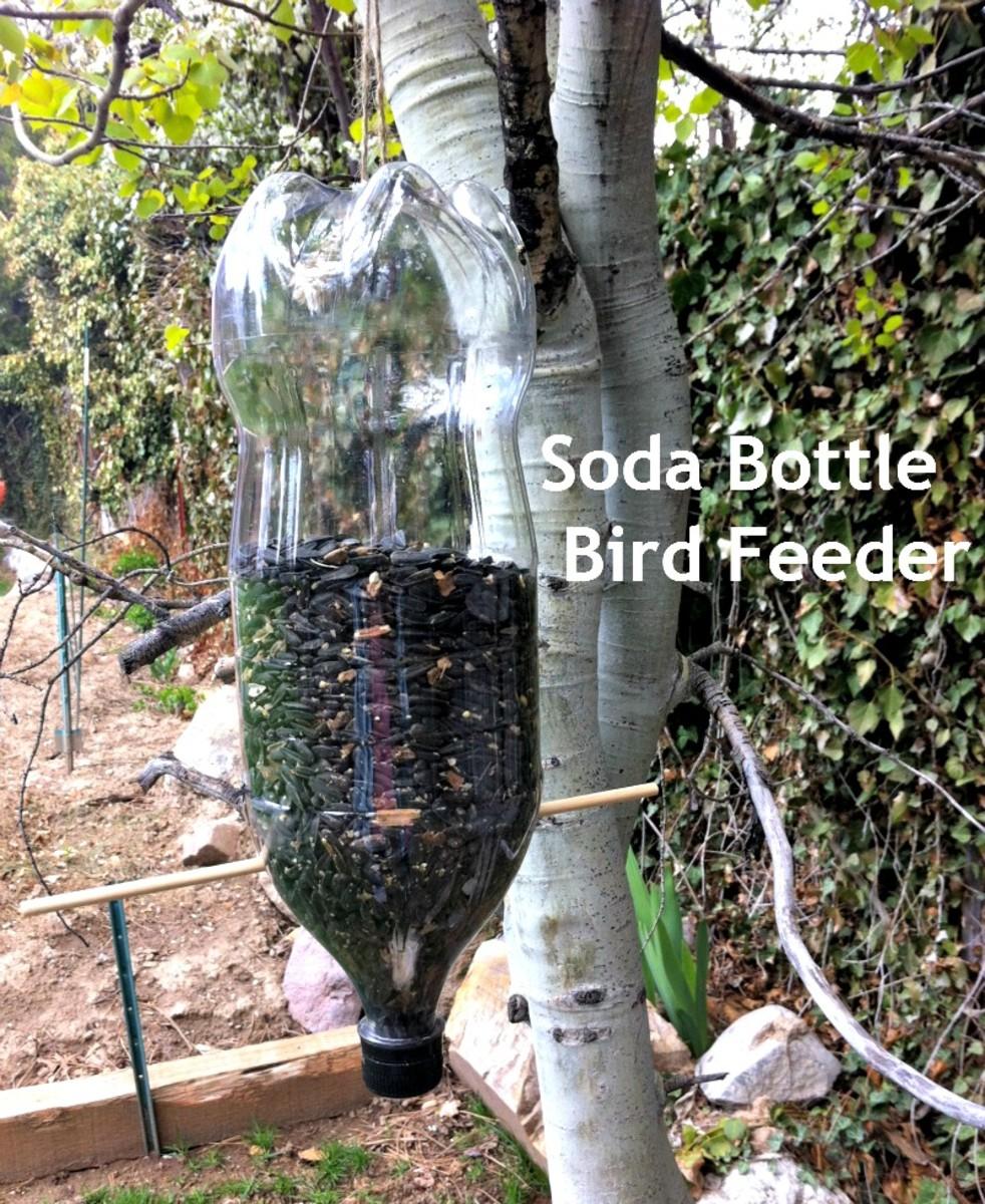 Earth Day Activities for Kids - Soda Bottle Bird Feeder - TodaysMama