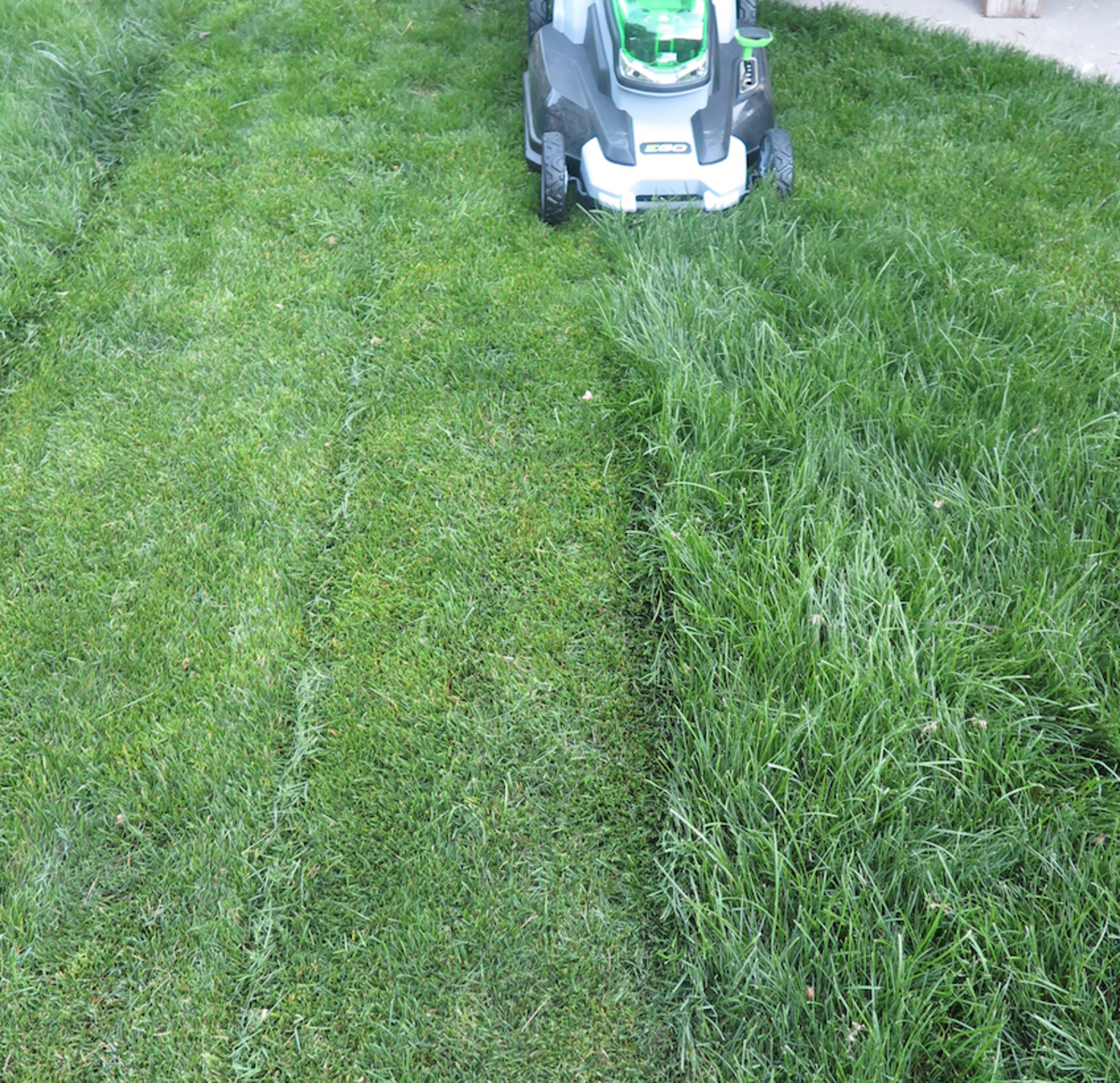 Ego Electric Mower Review