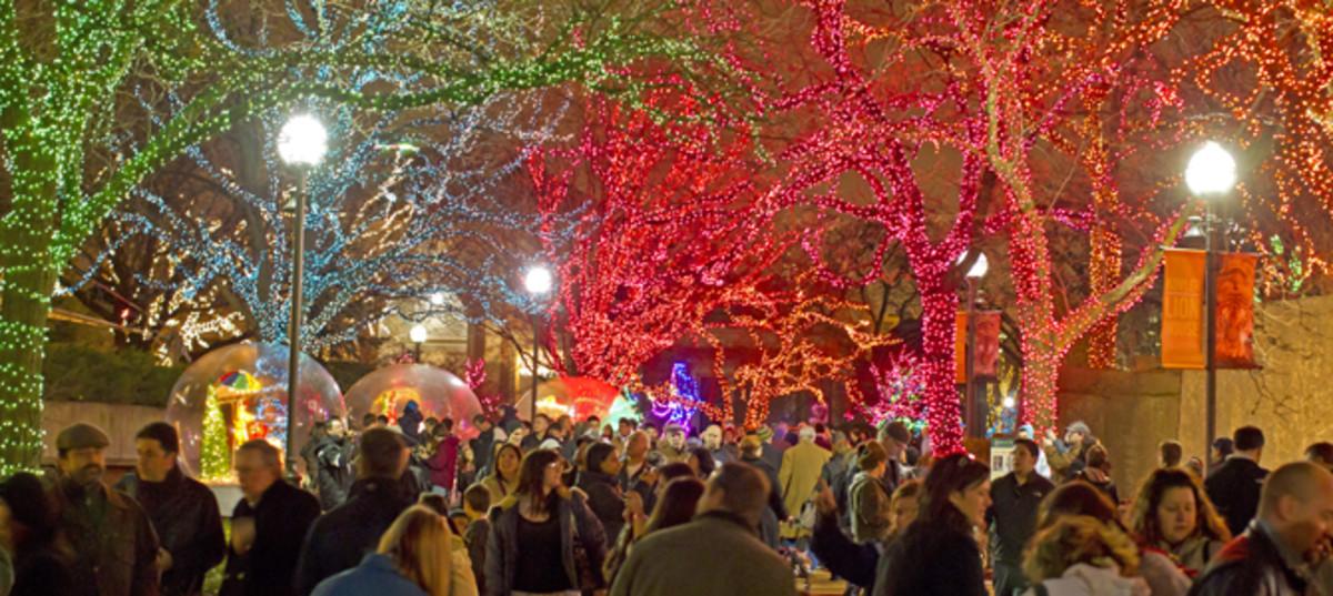 Christmas at the Zoo TodaysMama.com