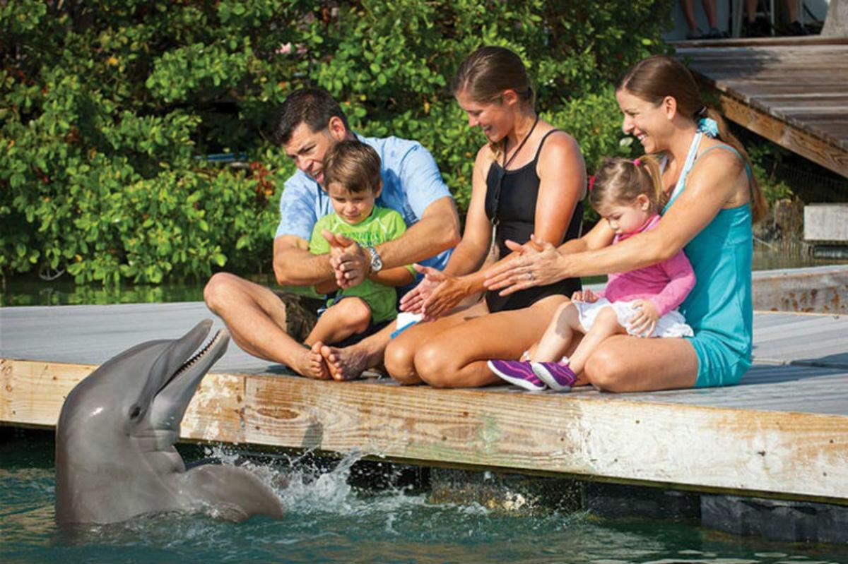 Hotel-Review-Hawks-Cay-Resort-6538f62569cc4bc6bb398c56bff33708