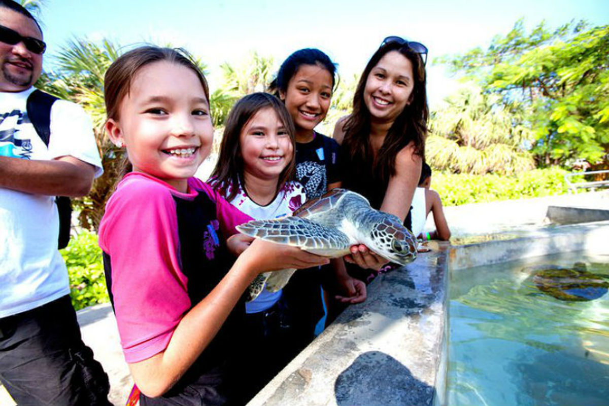FamilyFriendly-Things-to-Do-in-Grand-Cayman-f4819b2bcbef42b380ce785eaaefc07b