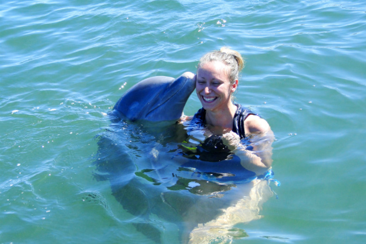 FamilyFriendly-Things-to-Do-in-Grand-Cayman-23f2ac8ceccf4e5c869a25eef12d22ba
