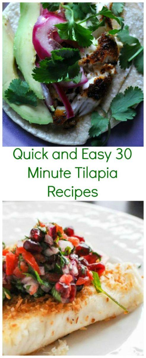 Tilapia Recipes 2