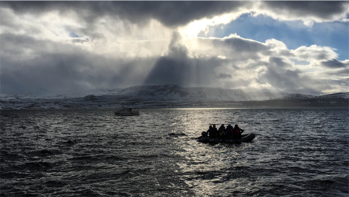 My most adventurous boat ride in the most remote part of Iceland!