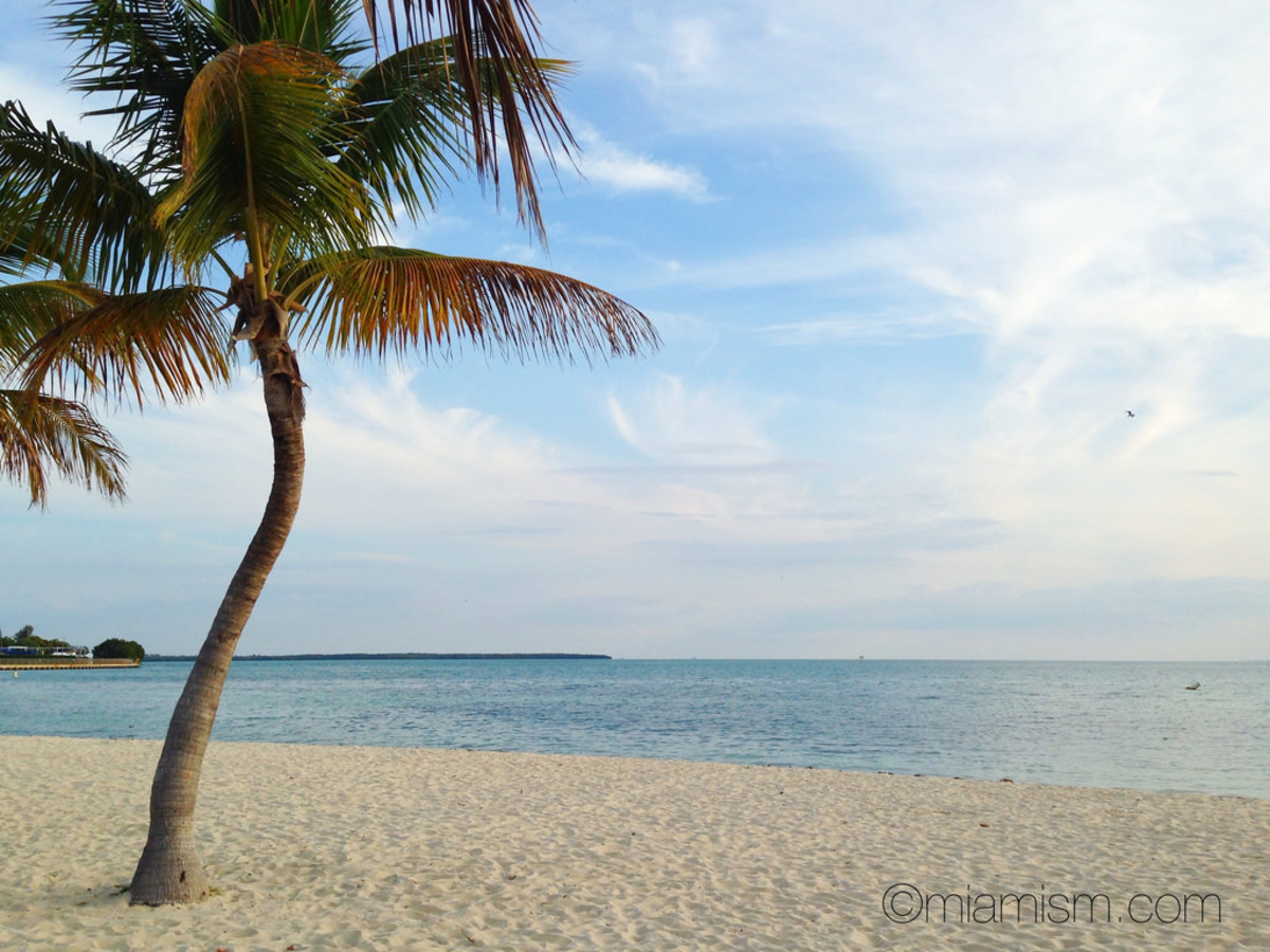 Key Biscayne Beach near Miami (Flickr: Ines Hegedus-Garcia)