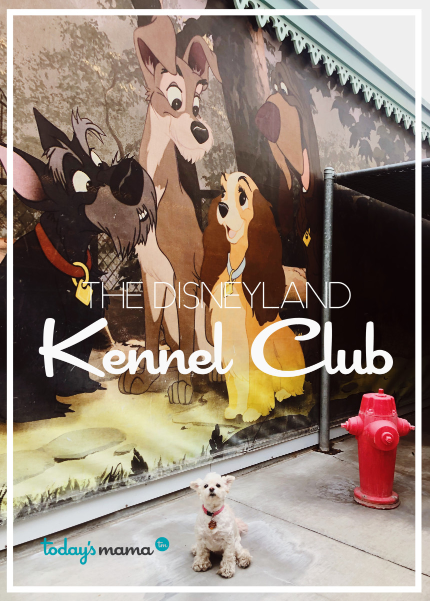 todays mama DISNEYLAND kennel club