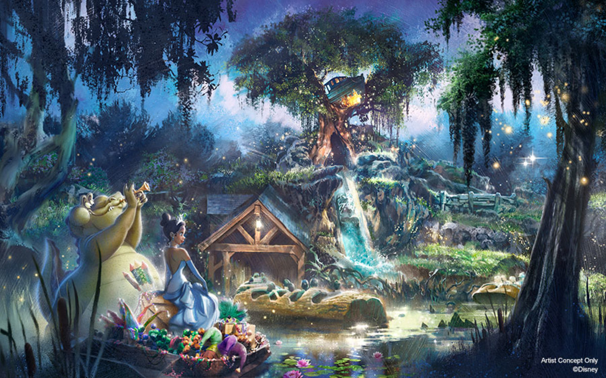 Disney Splash Mountain Princess and the Frog